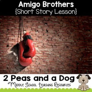Amigo Brothers Short Story Lesson