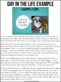 Pet Memes Narrative Writing Assignment   Distance Learning