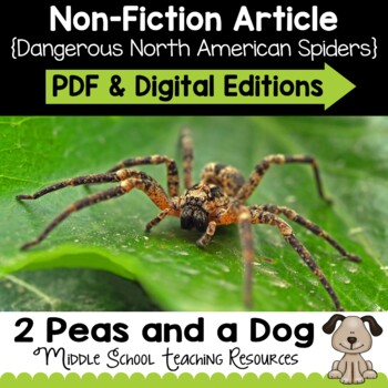 Dangerous North American Spiders Non-Fiction Article