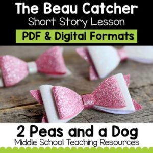 The Beau Catcher Short Story Lesson