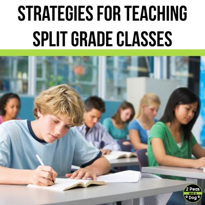 Teaching a split grade class is not an easy feat. Read this list of strategies for teachers to consider when teaching a split grade class.